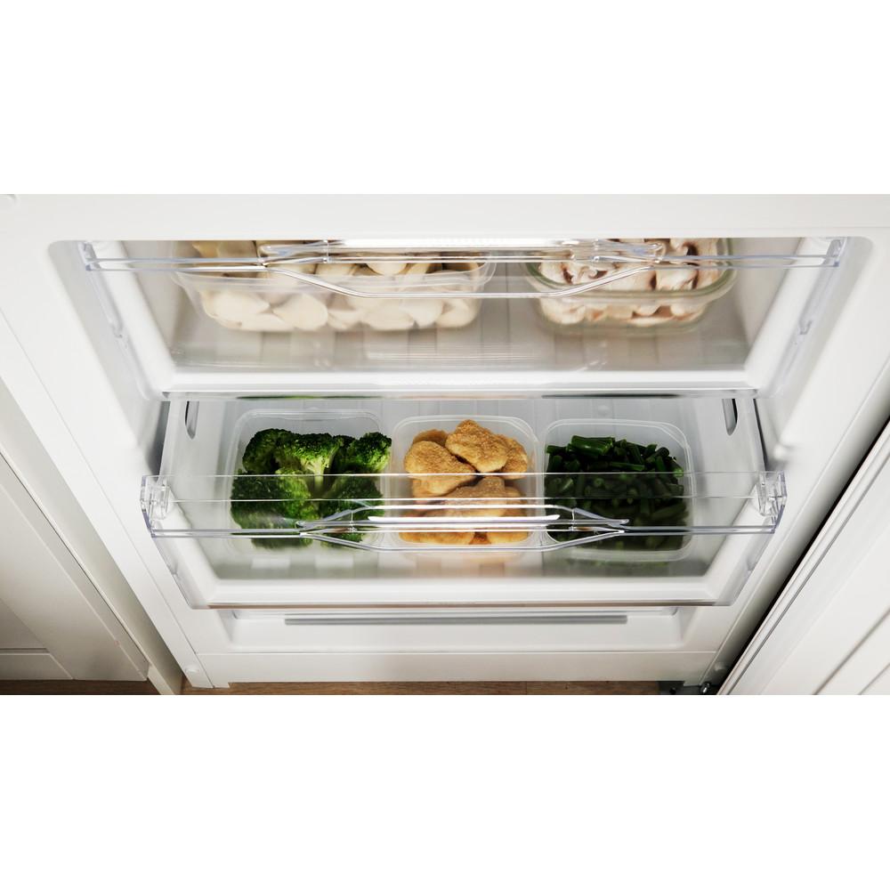 Indesit Холодильник с морозильной камерой Отдельностоящий DFN 20 Белый 2 doors Drawer