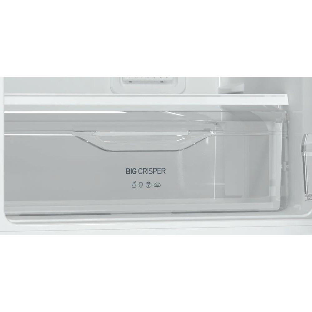 Indesit Холодильник с морозильной камерой Отдельностоящий DFE 4200 S Серебристый 2 doors Drawer